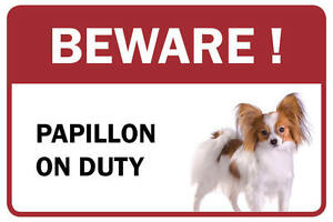 Papillon Beware Business Store Retail Counter Sign