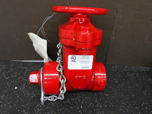 Waterous Co Fire Hose Valve 222h 250 2 25hgs