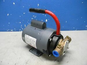 Pentair Shurflo 1 2 Hp Flexible Self priming Impeller Pump 3 4 Inlet Mrb9901
