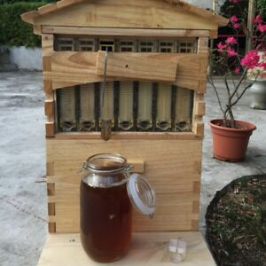 7 Auto Honey Beehive Frames Wooden Beekeeping Brood Box All Accessories