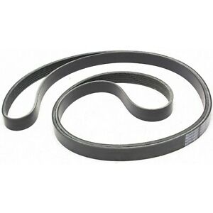 New Drive Belt Chevy Olds F150 Truck F250 F350 Yukon Suburban Ford F 150 Mustang