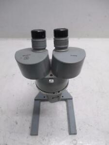 American Optical Spencer Stereo Microscope With 3x Objective