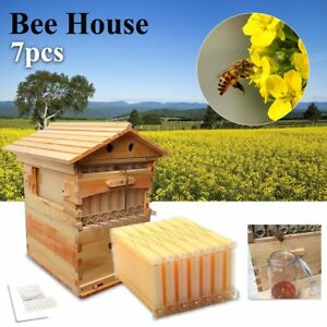 7pcs Auto Hive Honey Beekeeping Beehive Raw Bee Comb Hive Frames Harvesting Usa
