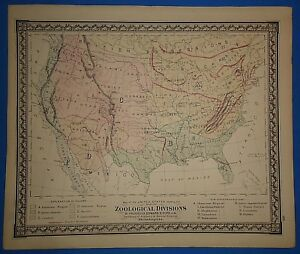 Vintage 1876 Zoological Divisions Of The United States Map Old Antique Original