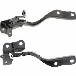 Lx1236134 Lx1236135 Hood Hinges Set Of 2 New Right and left Lh