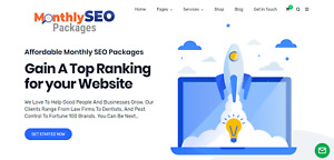 Premium Wordpress Seo Ready Made Website For Sale 10k 15k Mon Potential
