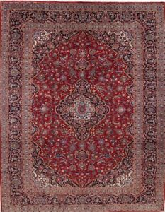 Vintage Traditional Floral Persian Oriental Hand Knotted 10x13 Red Wool Area Rug