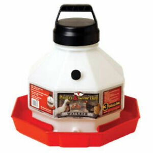 Poultry Fountain Game Bird 3 Gallon Plastic Waterer Chicken Easy Carry