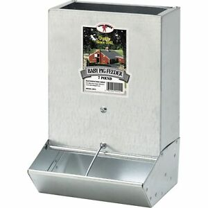 Little Giant 2 Hole Baby Pig Feeder