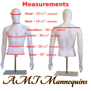 Male Mannequin Torso head Arm dress Form Display Adjust Height white Dress Form