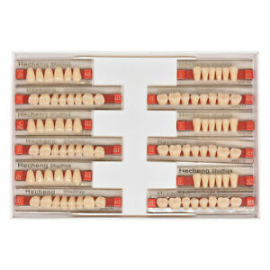 3 Sets 84pcs Acrylic Resin Denture False Tooth Dental Complete Fake Teeth A3 5