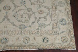 Antique All Over Floral Sage Green Large Area Rug Hand Knotted Living Room 10x14