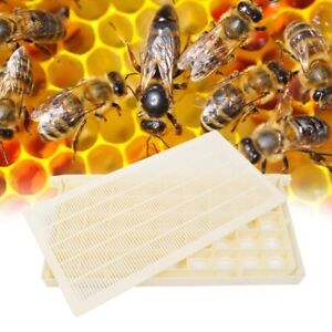 Multifunction Bee Queen Rearing Cup Kit System Cultivating Cage Beekeeping Tool