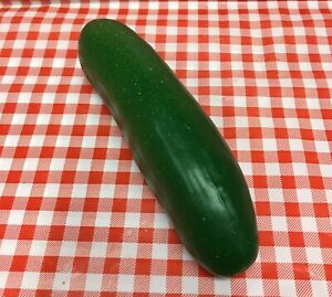 Faux Fake Food Replica Vegetable Cucumber Home Produce Display Movie Prop Vck6