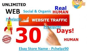 30 Days Unllmited Web Traffic Website For Best Price