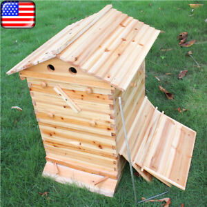 2020 Bee Hive House Beehive Beekeeping Brood Wooden Box Kit For Auto Honey Frame