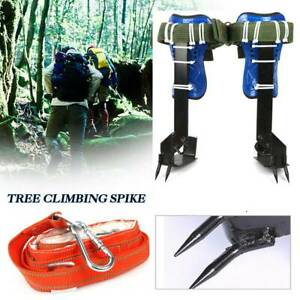 2 gear Tree pole Climbing Spike Set With Safety Belt Strap Rope Us
