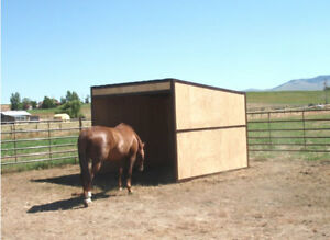 Horse Run In Shed Building