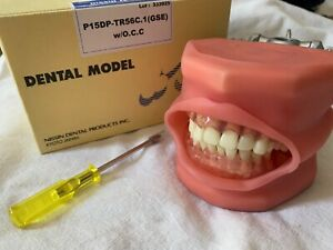 Kilgore International Dental Model P15dp tr56c 1 W Occ