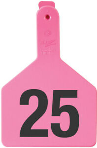 Z Tags Cow Ear Tags Pink Numbered 76 100