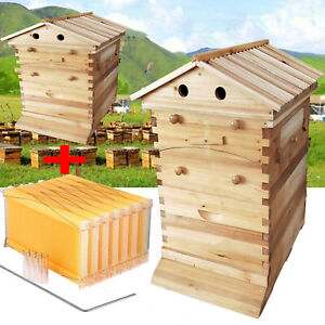 7pcs Bee Hive Frame Honey Deep Frames W Beehive Boxes Beekeeping Wooden House