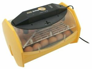 Brinsea Products Manual Egg Incubator For Hatching 24 Chicken Eggs Or Equivalent