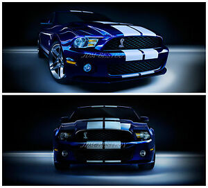 Ford Mustang 10 Rally Racing Stripes Decal Sticker Vinyl Wrap D I Y Kit