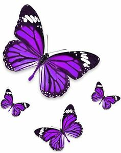 Set 4x Sticker Decal Vinyl Car Bike Bumber Butterfly Blue Purple