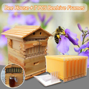 7x Auto Honey Hive Beekeeping Frames Beehive Cedarwood Super Brood Box