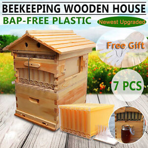 7 Pcs Auto Honey Bee Hive Frames Beekeeping Wooden Super Brood Box House
