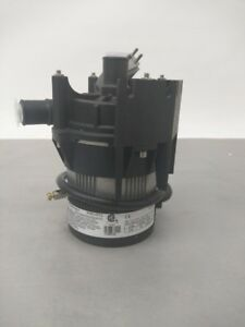 Laing Thermotech Circulating Pump E10 nshnnnn2w 01 230v 60w 50 60 Hertz