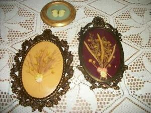 Chic Italian Florentine Filigree Convex Dried Flowers Butterfly Picture Shabby