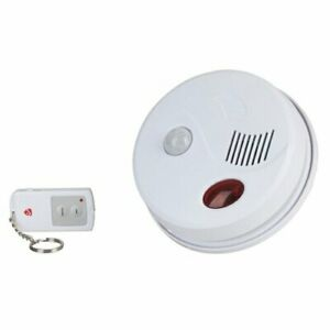 Dual Purpose Ceiling Mount Entry Motion Chime And Alarm With Remote Control