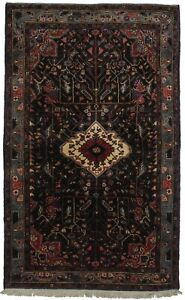 Spectacular Hand Knotted Foyer Hamedan Persian Rug Oriental Area Home Carpet 4x7
