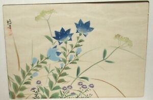 Chinese Original Watercolor Floral Painting Signed