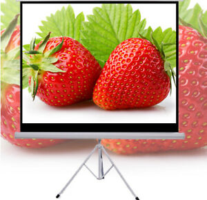 Portable 70x70 Hd 4k 1080p 1 1 Pull up Projector Projection Screen stand Tripod