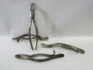 4 Antique Tiemann Dental Forceps Tooth Extractors M 407