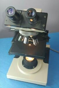 B l Bausch Lomb 31 74 24 Compound Binocular Microscope With 3 Objectives