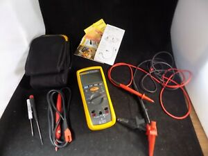 Fluke 1507 Insulation Tester With Leads And Case