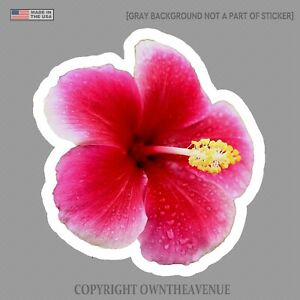 Hawaiian Hibiscus Flower Sticker Car Window Truck Vinyl Decal 3 5 Rdrkpinkrain