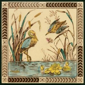 Th3739 Very Rare Aesthetic Movement Nature Study Pond Life Print Tint Tile 1899