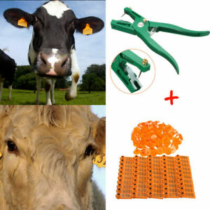 100 Number Livestock Cattle Pig Sheep Ear Tag Id Lable Marker Applicator Plier