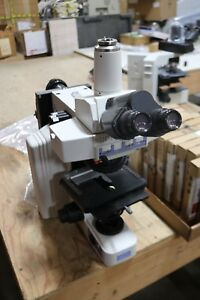 Microscope Nikon Eclipse E600 With Sutter Attachment
