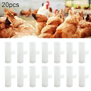 20 1 2 Pvc Tee Fittings Automatic Waterer Drinker Cup nipples Chicken Poultry