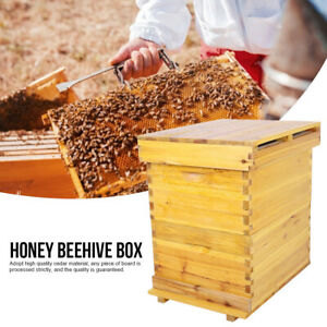 Beekeeping Cedarwood Super Brood Box Kit For 10 Frames Honey Bee Hive House