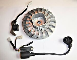Predator 2000 Watt Inverter Generator Powerhorse Flywheel And Coil Oem