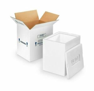 Pro Pak Insulated Styrofoam Container 12x10x9 Inside With Shipping Box