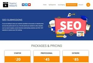 Traffic Reseller Website Full Setup Domain And First Month Hosting Included