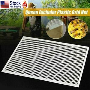 10 Frame Bee Queen Excluder Trapping Net Grid Beekeeping Plastic Equipment Tool