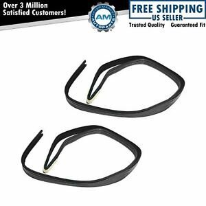Glass Run Channel Front Door Weatherstrip Seal Pair Set Of 2 For Chevy Gmc New